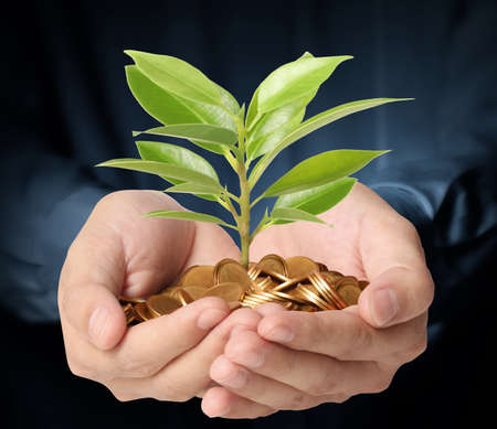 grow money: Concept of money growing from plant coins