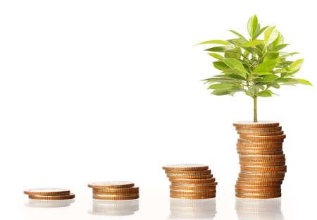 money savings: Coins graph