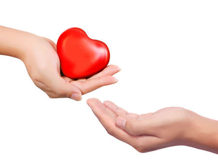 womans hands: Red heart in womans hands