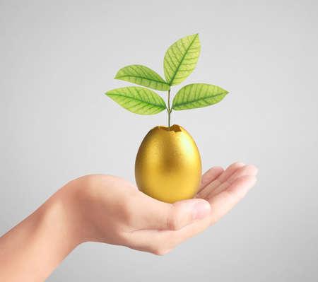 Hand Holding of golden eggs