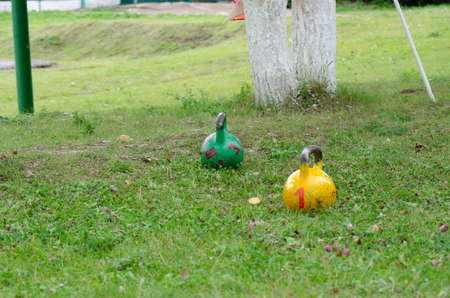 Green and yellow athletic kettlebell on green grass