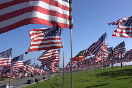 American flags on the lawn. Lots of American flags.