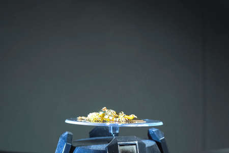 A golden scrap of old gold jewelry on electronic scales.