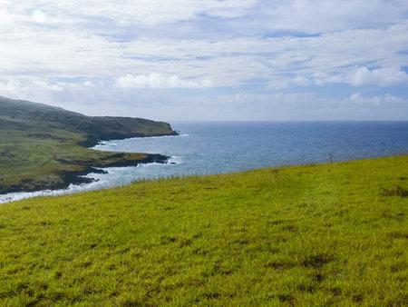复活节岛,景观,植被和海岸的性质。