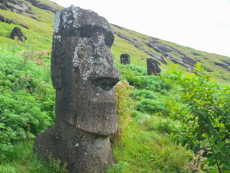 Statues of the gods of Easter Island. Ancient statues of ancient civilization on Easter Island. 版權商用圖片