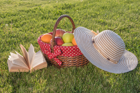 Book, hat and basket of ripe fruits on the grass