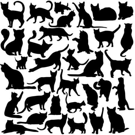 Cat icon vector set. pet illustration sign collection. tomcat symbol.