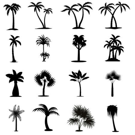 Palm icon vector set. beach illustration sign collection. relaxation symbol or logo.