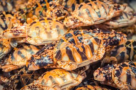 Row of crabs in the Asian wet market. Fresh crabs supermarket.