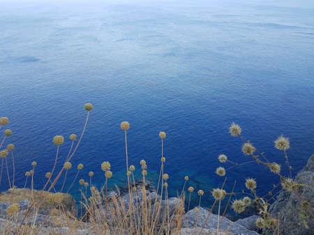 Plants growing on stones rocks against tranquil blue sky in wonderful nature. Banco de Imagens - 125396721