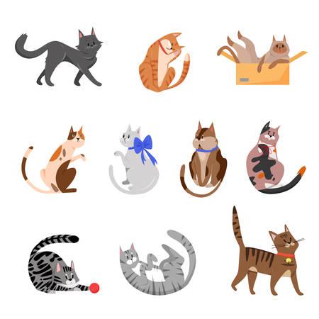 Purebred cats, playful pets vector illustrations set