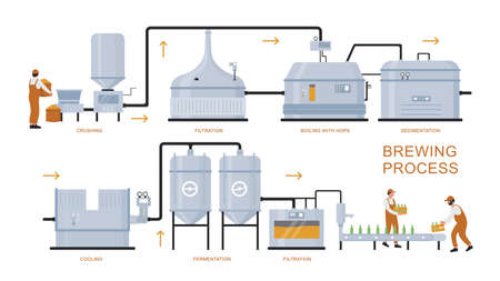 Beer brewing production process vector illustration. Cartoon flat infographic poster of brewery plant equipment for preparation, boiling, fermentation, filtration craft beer product isolated on white