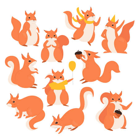 Squirrel vector illustration set. Cartoon cute funny furry squirrel characters collection, fluffy wild animals holding acorn or birthday balloon, wearing holiday hat and jumping isolated on white