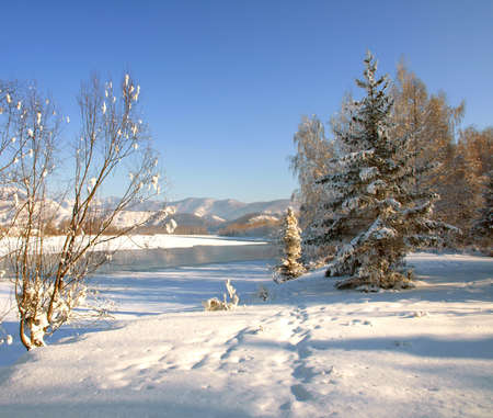 Winter landscape with snow trees and river in mountains Stock Photo - 11474474