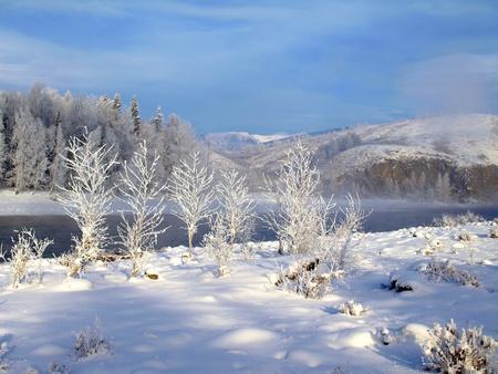 neige qui tombe: Paysage d'hiver avec la neige et les arbres de rivi�re dans les montagnes