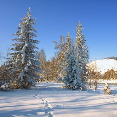 Winter landscape with snow trees and river in mountains Stock Photo - 11698029
