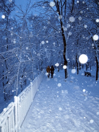 Alley in a park covered with snow and couple in walking in winter park in snowfall. Stock Photo - 11698019