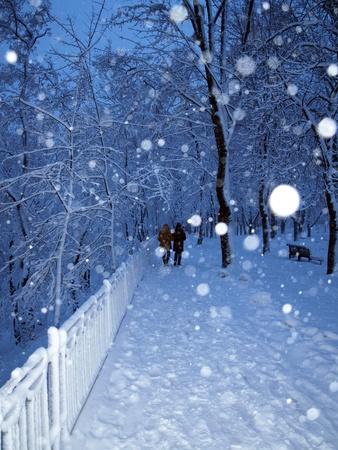 Alley in einem Park mit Schnee und Paar zu Fuß in Winter Park im Schnee bedeckt.