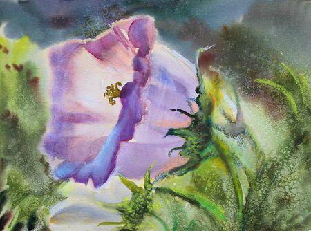 Watercolor painting of the beautiful flower Zdjęcie Seryjne