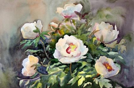 pfingstrosen: Aquarellmalerei der sch�nen Blumen Lizenzfreie Bilder