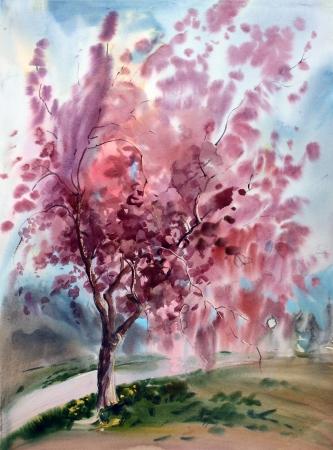 Aquarellmalerei Landschaft mit blühenden Frühling Baum mit Blumen Standard-Bild - 13700640