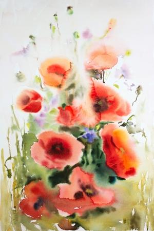 양귀비의 원래 수채화 그림 스톡 콘텐츠