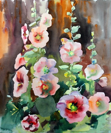 Watercolor painting of the beautiful flowers mallow  photo