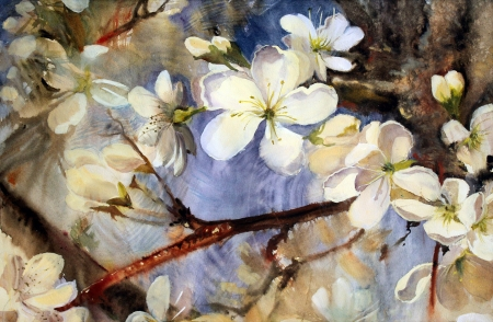 Watercolor painting of the blooming spring tree branches with white flowers