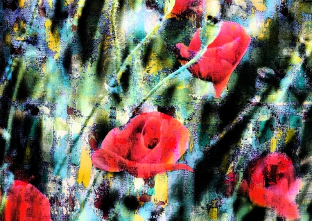 papaver: Floral background with red poppy flowers. For invitation, greeting card or book cover.