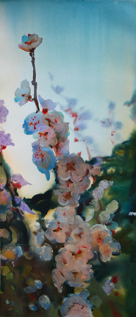 japanese garden: Watercolor painting of the beautiful flowers