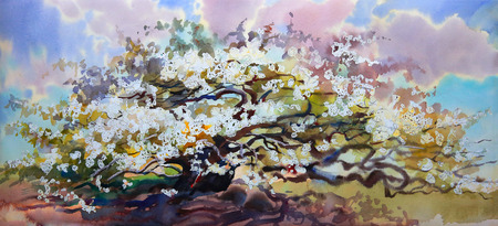 japanese garden: Watercolor painting landscape with blooming spring tree with flowers.