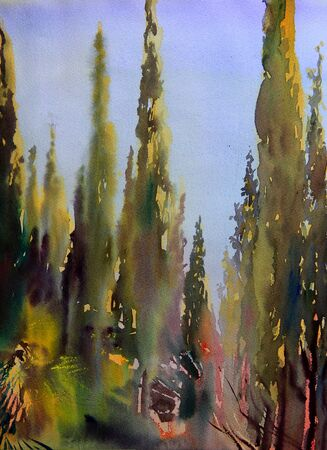 french countryside: Mediterranean trees painted by watercolor. Stock Photo