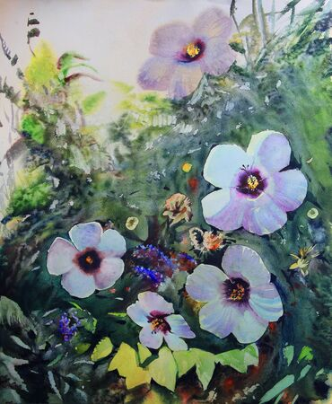 garden flowers: Watercolor painting of the beautiful flowers.