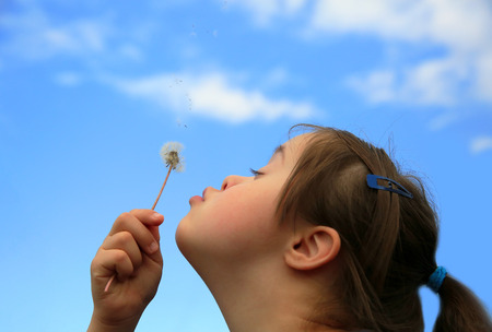 Kleines Mädchen bläst Löwenzahn Standard-Bild