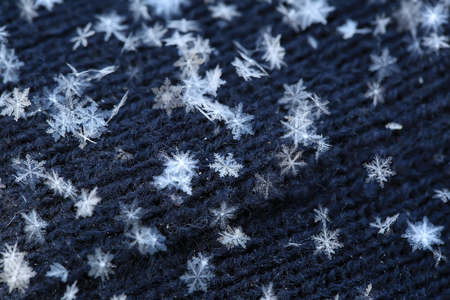 Natural white snowflakes, macro shot