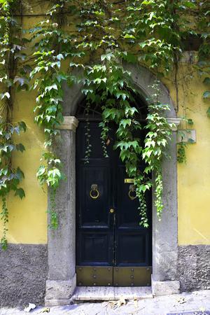Old italian vintage door