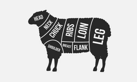 Meat cuts. Cuts of Mutton. Sheep silhouette isolated on white background. Vintage Poster for butcher shop. Retro diagram. Vector illustration Ilustração