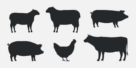 Silhouettes of Farm Animals. Cow, Pig, Sheep, Lamb, Hen. Farm Animals icons isolated on white background. Vector livestock icons. Banco de Imagens - 132399208