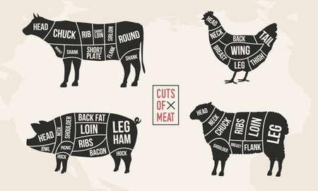 Conjunto de diagramas de carne. Cortes de carne. Silueta de vaca, pollo, cerdo y oveja. Carteles vintage para comestibles, carnicería, carnicería. Ilustración vectorial