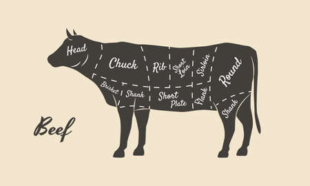 Meat diagram. Cuts of meat. Cow silhouette isolated on white background. Vintage poster for butcher shop, restaurant menu. Vector illustration Ilustracje wektorowe