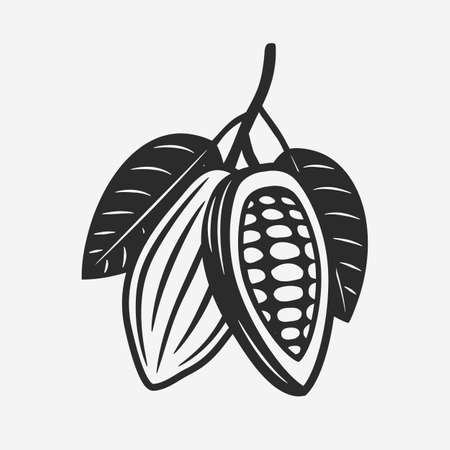 Cocoa Beans vintage icon. Branch with leaves and cocoa beans. Vector illustration Ilustração