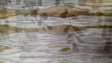 Old gray boards. A panel made of old weathered sedges. Wooden vintage background
