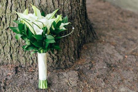 bridal bouquet. wedding bouquet stands near the tree. space for text