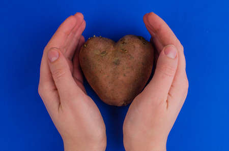 Ugly potato in the heart shape on a gray background. Unnormal vegetable or food.