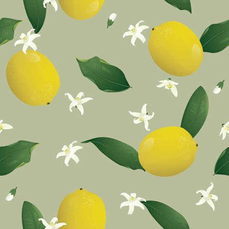 Lemon seamless background Illustration