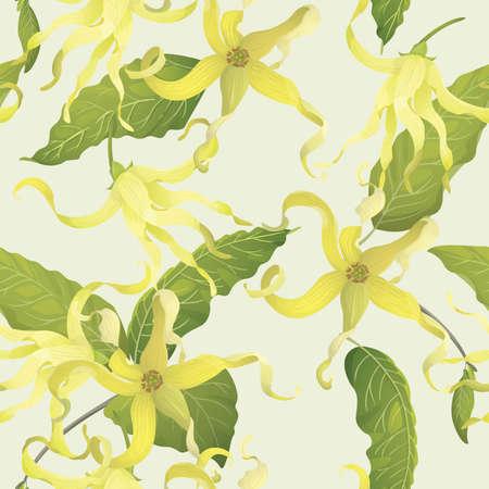 Ylang Ylang seamless backgrounnd Illustration