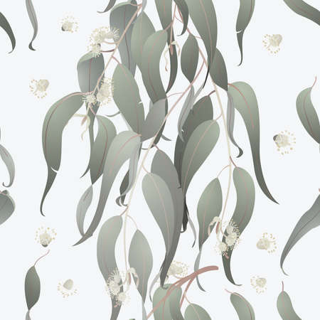 Eucalyptus seamless background Vector
