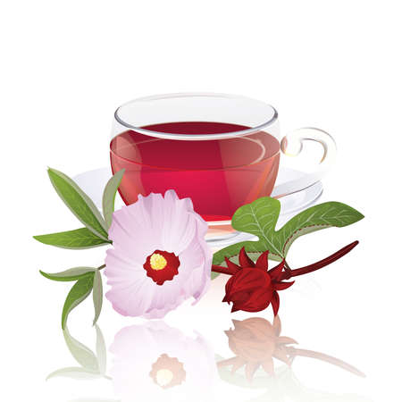 Karkade tea with hibiscus flower (Hibiscus sabdariffa)