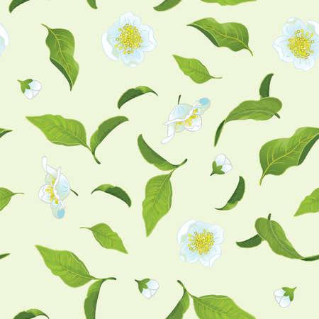 camellia: Tea leafs and flowers seamless background Illustration