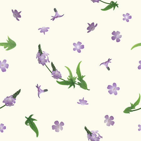 Seamless background with verbena flowers